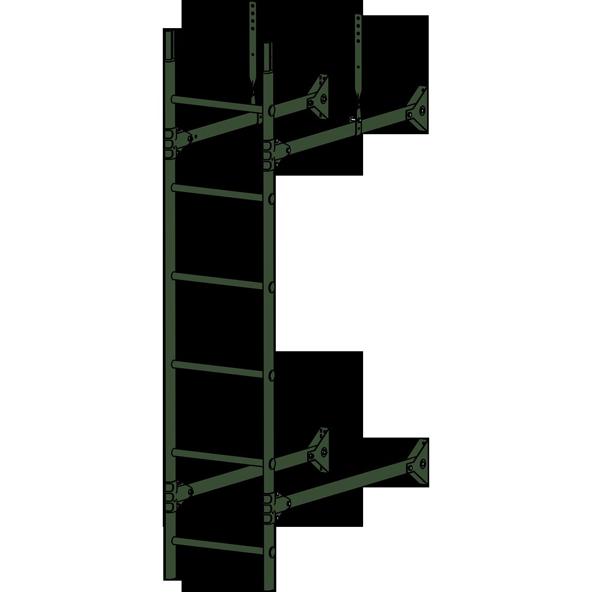 Лестница стеновая PRESTIGE ZN 3м RAL 6020 Зеленый хром